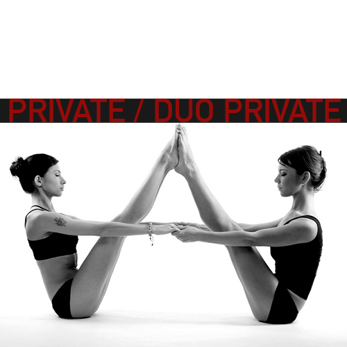 Pilates Yoga Fly Private Class