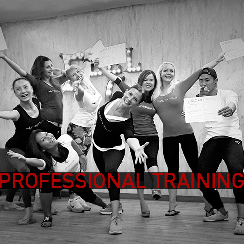 Professional Training for Pilates and Yoga Fly